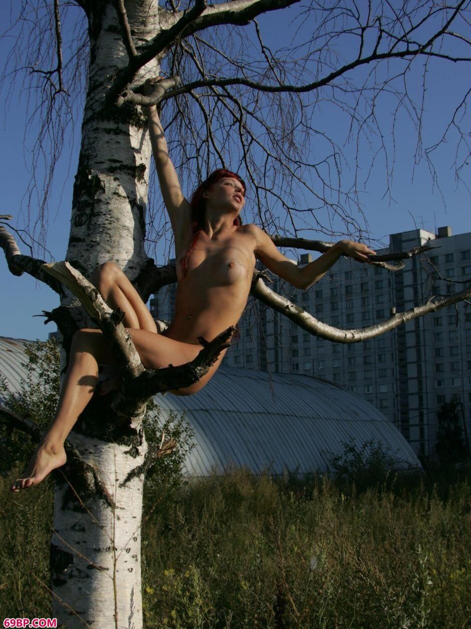 超模艾拉Ira坐在树枝上的勾魂美体_国模大胆人体艺术